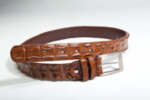 Crocodile Leather 1