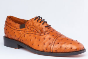 cav30 Ostrich lacee